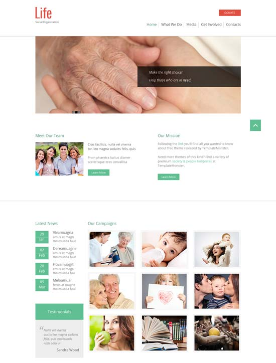 Free-HTML5-Theme-for-Social-Organization-2014